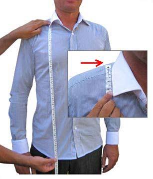 Shirt Length image