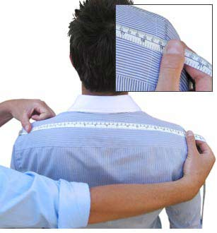 Shoulders image